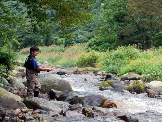 Japan - Ishikawa-ken region.