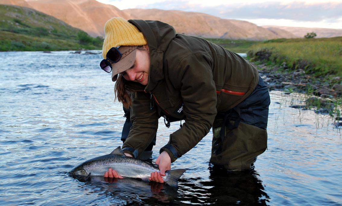 Salmon madness