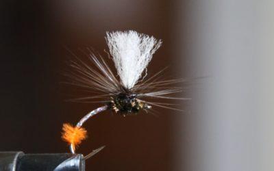 Why Klinkhammer Fly Works