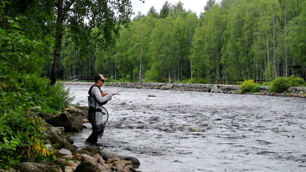 world fly fishing championships 2020